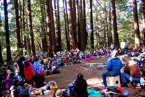 Tu B'Shvat in the Redwoods