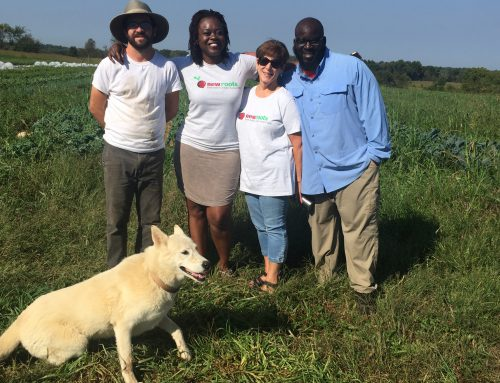 Project Spotlight: New Roots' food justice work continues and expands